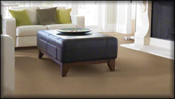 Savannah Carpet Stores Quality Carpet In Savannah Ga